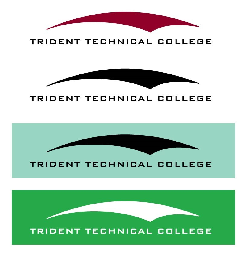 Examples of appropriate color usage of logo